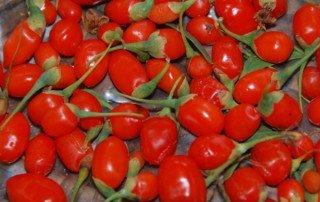 goji-frutti
